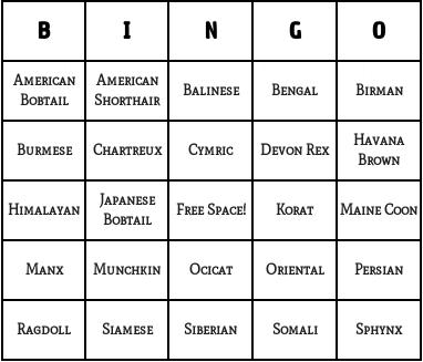 cat breeds bingo cards
